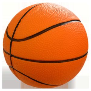 pilota basquet